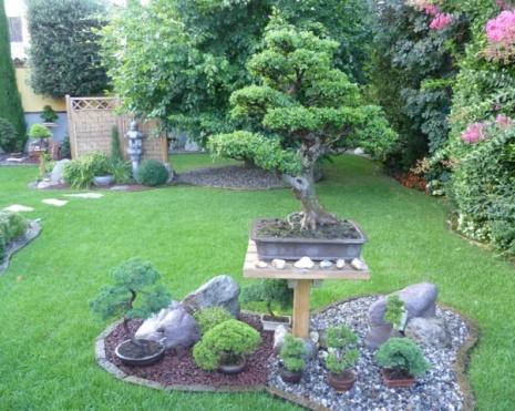 Evergreen community di ebay - Giardini zen da esterno ...