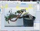 Clicca sull'immagine per ingrandirla  Nome:   bacchetta 1.JPG Visite: 1312 Dimensione:   65.4 KB ID: 10007