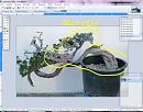 Clicca sull'immagine per ingrandirla  Nome:   sel e ctrl.JPG Visite: 1371 Dimensione:   68.3 KB ID: 10008