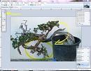 Clicca sull'immagine per ingrandirla  Nome:   palchetto sposta pixel.JPG Visite: 1321 Dimensione:   66.8 KB ID: 10009