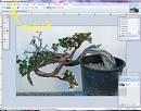 Clicca sull'immagine per ingrandirla  Nome:   lazo taglia.JPG Visite: 1337 Dimensione:   53.3 KB ID: 10013